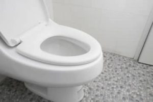 (地震)トイレの流し方(panasonic/lixil/toto)と、太陽光自立運転切替方法(syarp/panasonic/mistubishi)!